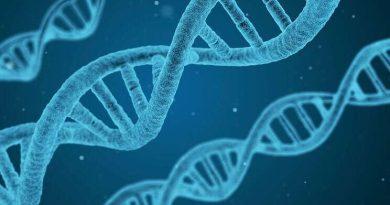 கொரோனா சோதனை (PCR test) என்றால் என்ன?