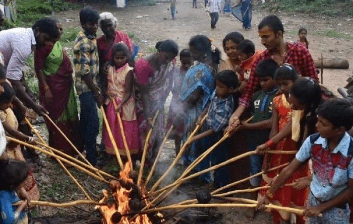 மருத்துவப் பாரம்பரியத்தை வெளிப்படுத்தும் 'தேங்காய் சுடும் பண்டிகை'